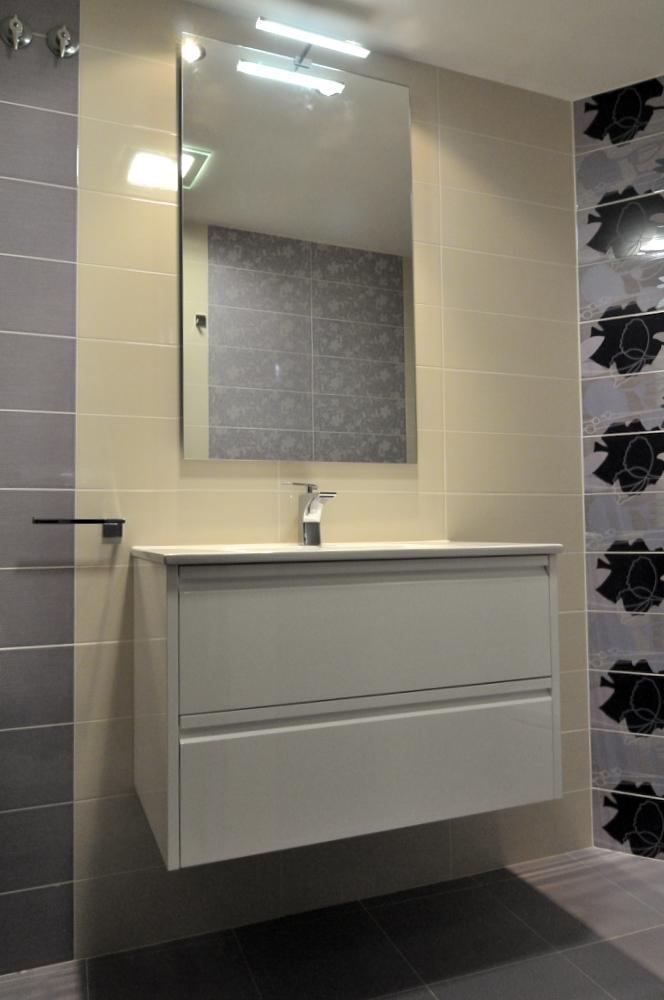 Bloque Baño Adaptado:Baño de un bloque de dos gavetas deslizantes de color blanco